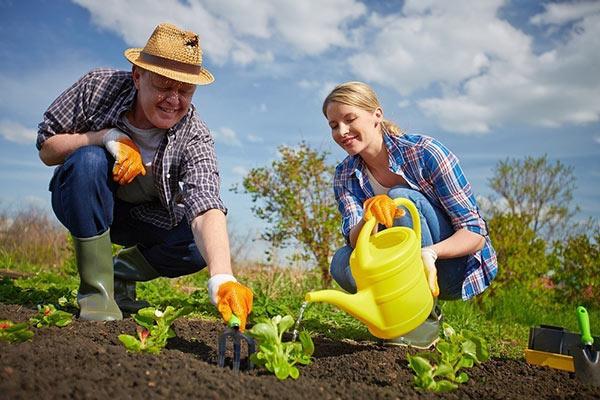 Советы садоводам
